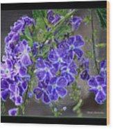 Sky Flower Window  Wood Print