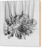 Sky Light - 610bwi Wood Print