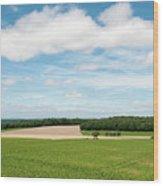 Sky Over Field Wood Print