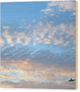 Sky Plane Wood Print
