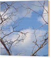 Look At The Blue Sky Wood Print