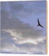Sky16 Wood Print