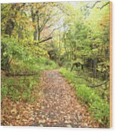 Skylands Trail H Wood Print