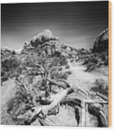 Skyline Arch In Arches National Park Wood Print