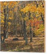 Skyline Drive At Naked Creek Overlook In Shenandoah National Park Wood Print