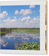Skyscape Reflections Blue Cypress Marsh Florida Collage 1 Wood Print