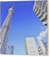 Skytree In Blue Wood Print