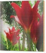 Skyward Red Lilies Wood Print