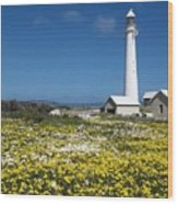 Slangkop Lighthouse, Kommetjie  Wood Print