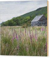 Slate Cabin In Wales Wood Print