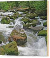 Slate Creek, Nez Perce National Forest, Idaho Wood Print