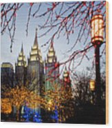 Slc Temple Lights Lamp Wood Print
