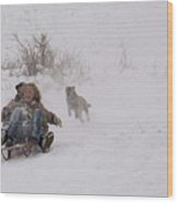 Sled Before The Dogs? Wood Print