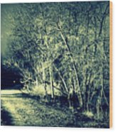 Sleep Walk Wood Print