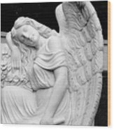 Sleeping Angel Wood Print