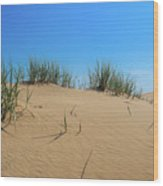 Sleeping Bear Sand Dunes Wood Print