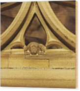Sleeping Dog In Strasbourg Cathedral Wood Print