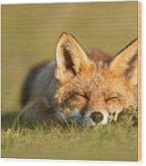Sleeping Fox Kit Wood Print