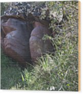 Sleeping In The Jungle - Stone Face In Forest Wood Print