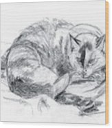 Sleeping Jago Wood Print