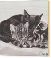Sleeping Kittens Wood Print