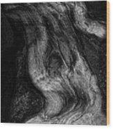 Sleeping Rocks Wood Print