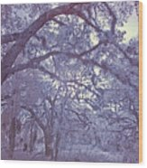 Sleepy Hollow's Muse Wood Print