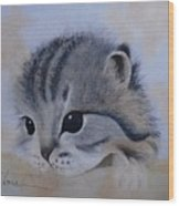 Sleepy Kitten Wood Print