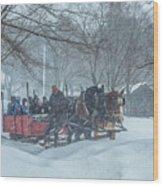 Sleigh Ride Wood Print