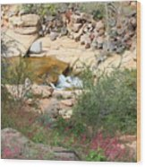 Slide Rock With Pink Wildflowers Wood Print