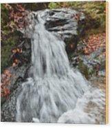 Slippery Rock Falls Fdr State Park Ga Wood Print