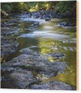 Sliver Creek Wood Print