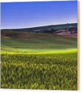 Sliver Of Sunlight On The Palouse Hills Wood Print