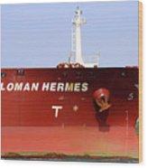 Sloman Hermes Detail 051718 Wood Print