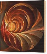 Slot Canyon Spiral Wood Print