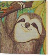 Sloth And Frog Wood Print