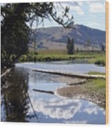 Slough Creek 1 Wood Print