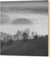 Slovakia Wood Print