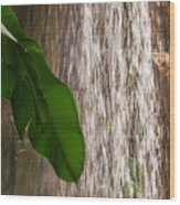 Slow Motion Tropical Waterfall Wood Print