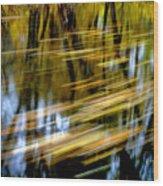 Slow Moving Stream - 2959 Wood Print