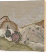 Slumbering Grace Wood Print