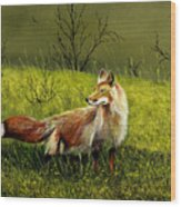 Sly Fox Wood Print