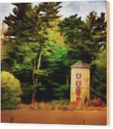 Small Autumn Silo Wood Print