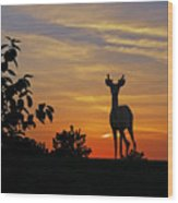 Small Buck Against Sunset Wood Print by Ron Kruger