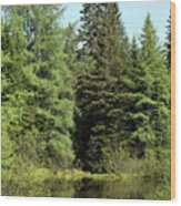 Small Country Pond Wood Print