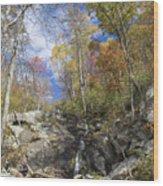 Small Fall Waterfall Wood Print