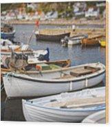 Small Fishing Boats Wood Print