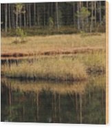 Small Forest Lake In Autumn Wood Print