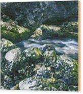 Small Freshwater Spring Under Rocks Wood Print
