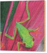 Small Frog Wood Print